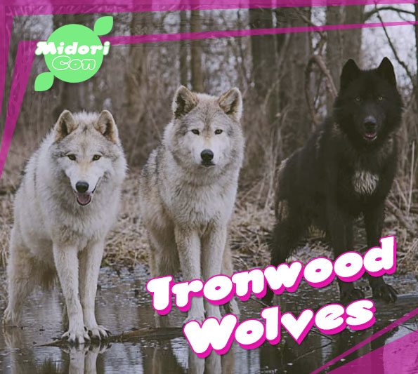 MidoriCon-2019-Ironwood-Wolves-Announcement